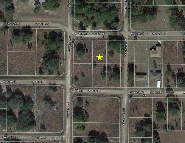 SW 112TH Place, Dunnellon, FL 34432 (MLS #O5956489) :: Team Turner
