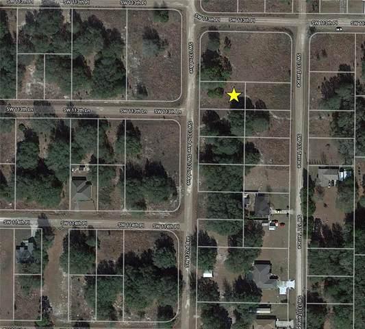 SW 132ND Avenue, Dunnellon, FL 34432 (MLS #O5956684) :: Zarghami Group