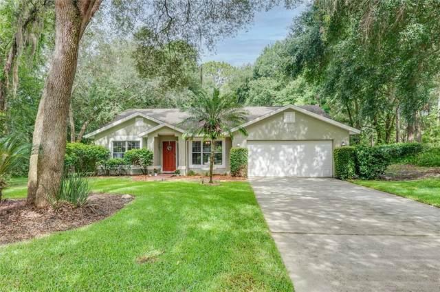 916 Southern Oak Lane, Apopka, FL 32712 (MLS #O5956808) :: Zarghami Group