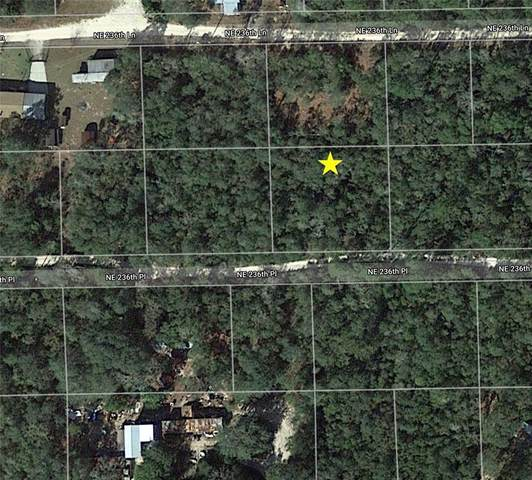 NE 236TH Place, Fort Mc Coy, FL 32134 (MLS #O5956829) :: The Hustle and Heart Group