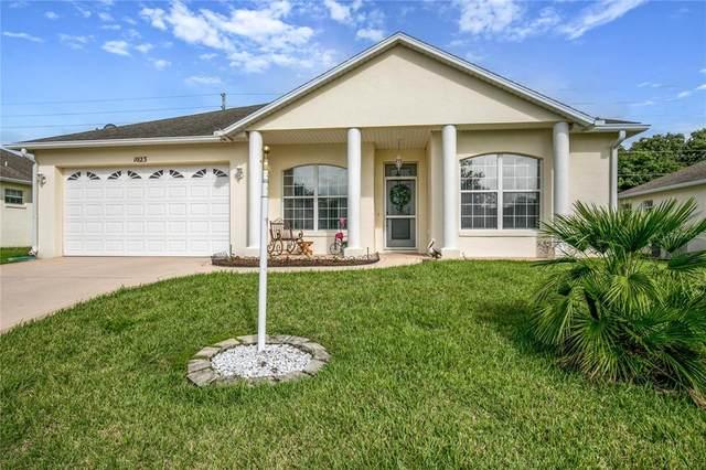 1023 Lake Pearl Place, Umatilla, FL 32784 (MLS #O5956950) :: Zarghami Group