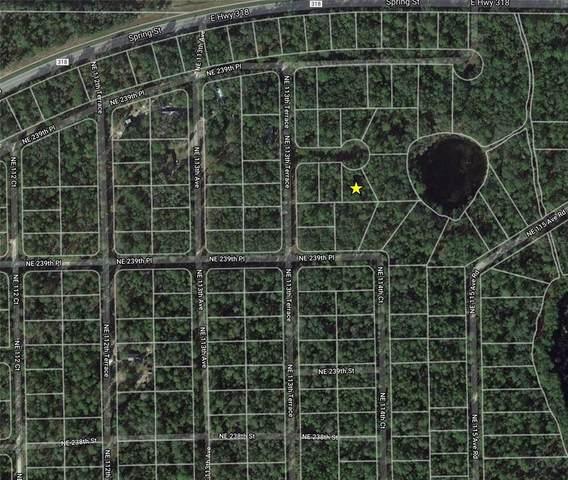 NE 239TH Street, Orange Springs, FL 32182 (MLS #O5956951) :: GO Realty