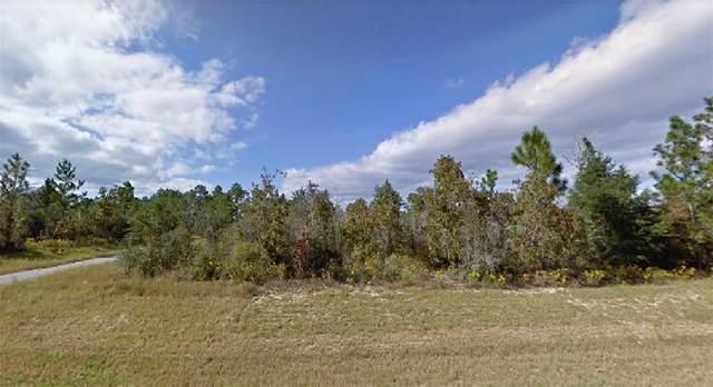 Medford Avenue, Chipley, FL 32428 (MLS #O5957122) :: Team Bohannon