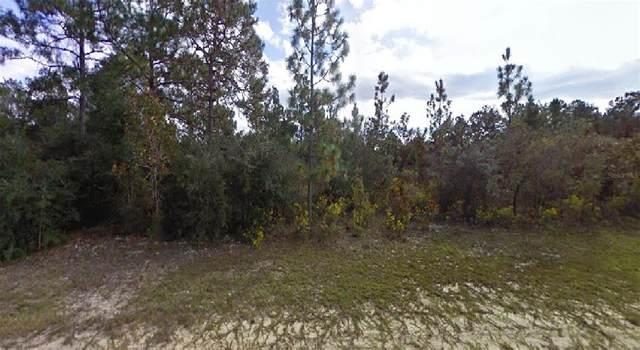 Lawrence Avenue, Chipley, FL 32428 (MLS #O5957123) :: Team Bohannon
