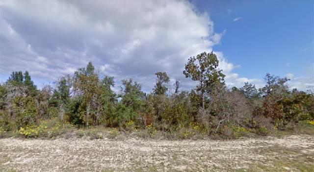 Bonita Drive, Chipley, FL 32428 (MLS #O5957259) :: Team Bohannon