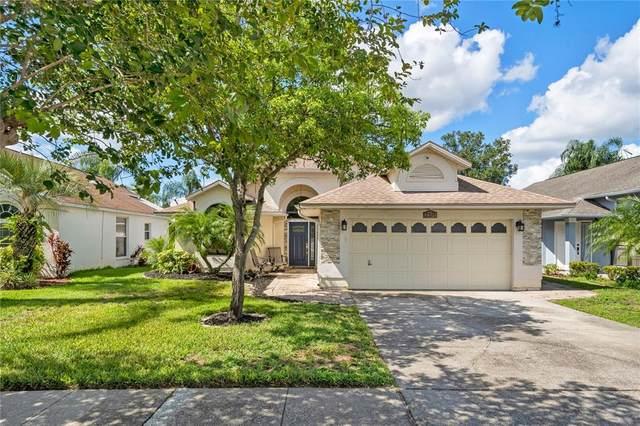 2371 Piedmont Lakes Boulevard, Apopka, FL 32703 (MLS #O5957266) :: American Premier Realty LLC