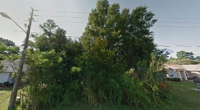 41 Greentree Street, Homosassa, FL 34446 (MLS #O5957284) :: Tuscawilla Realty, Inc