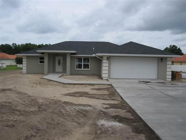 7347 N Gibralter Divide, Citrus Springs, FL 34433 (MLS #O5957486) :: Zarghami Group