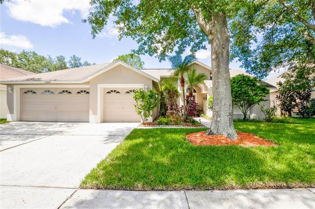 9213 Rockrose Drive, Tampa, FL 33647 (MLS #O5957506) :: Team Bohannon