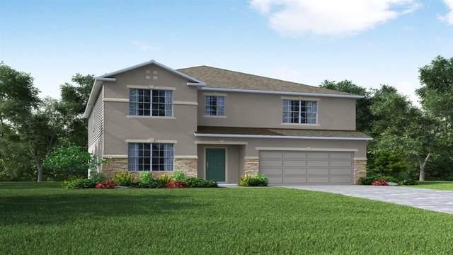 31783 Lily Arbor Circle, Wesley Chapel, FL 33545 (MLS #O5957607) :: Zarghami Group