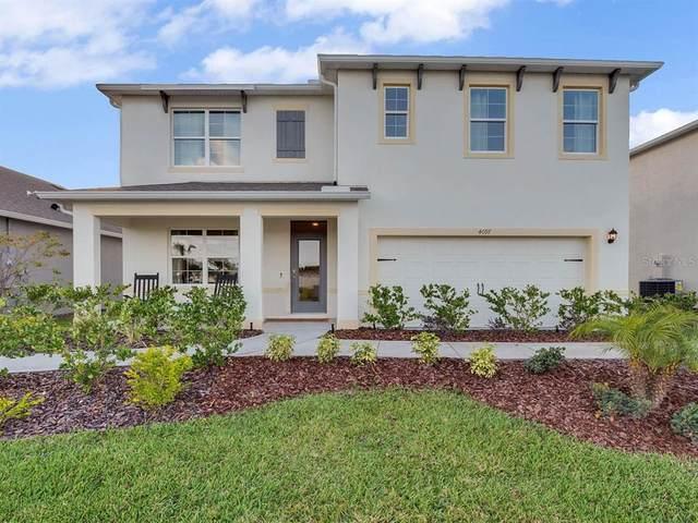 6525 Coral Berry Drive, Mount Dora, FL 32757 (MLS #O5957620) :: Zarghami Group