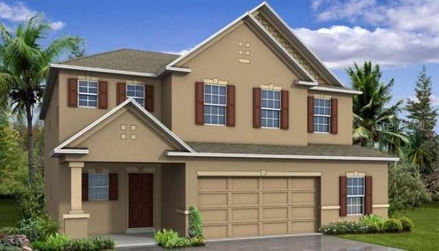 31849 Lily Arbor Way, Wesley Chapel, FL 33545 (MLS #O5957631) :: Zarghami Group