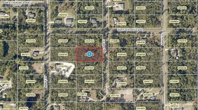 Balsam Street, Eustis, FL 32736 (MLS #O5957705) :: Premium Properties Real Estate Services