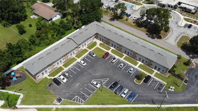 37202 Majestic Oak Court, Dade City, FL 33525 (MLS #O5957844) :: Cartwright Realty
