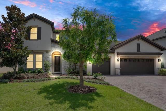 8446 Chilton Drive, Orlando, FL 32836 (MLS #O5957894) :: Bustamante Real Estate