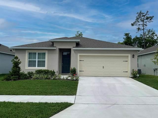 1817 Red Rock Road, Edgewater, FL 32132 (MLS #O5958246) :: Cartwright Realty