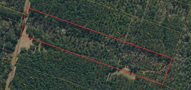SW Paradise Way, Greenville, FL 32331 (MLS #O5958310) :: RE/MAX Elite Realty
