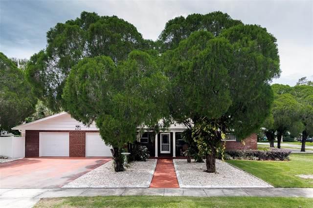 2434 Palmetto Road, Mount Dora, FL 32757 (MLS #O5958345) :: Zarghami Group