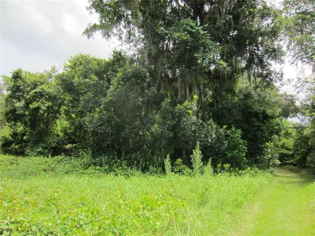 TBD SE 152ND Place, Summerfield, FL 34491 (MLS #O5958409) :: Globalwide Realty