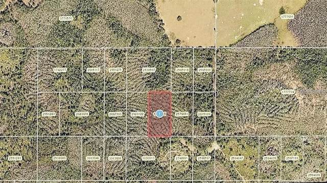 0 Calvin Lee Road, Clermont, FL 34714 (MLS #O5958624) :: Everlane Realty