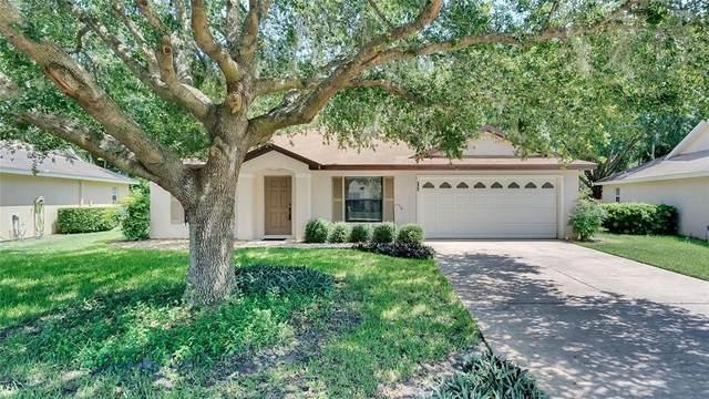 880 Vindale Road, Tavares, FL 32778 (MLS #O5958647) :: Kreidel Realty Group, LLC