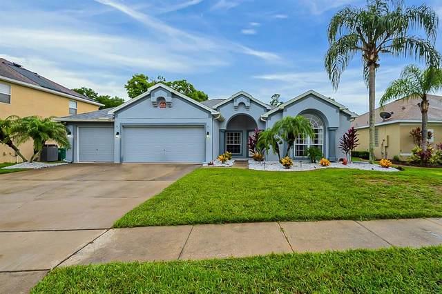439 Palm Crest Lane, Lake Mary, FL 32746 (MLS #O5958673) :: Expert Advisors Group