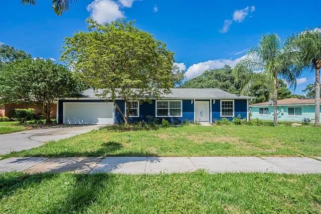 5339 Hillock Way, Orlando, FL 32810 (MLS #O5958775) :: Zarghami Group