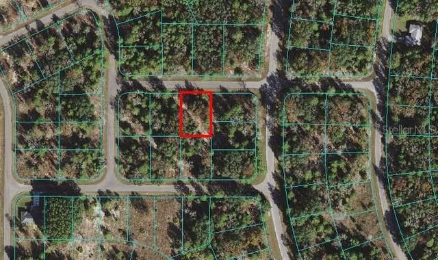 10 Fisher Course Lane, Ocklawaha, FL 32179 (MLS #O5958834) :: Cartwright Realty