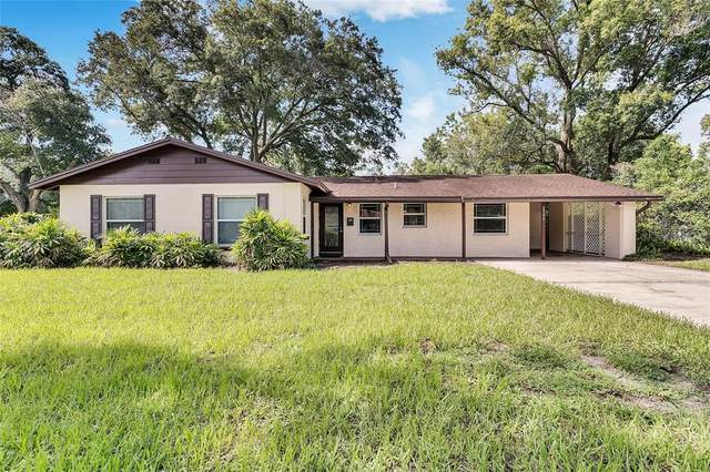 2366 Coldstream Drive, Winter Park, FL 32792 (MLS #O5958879) :: Aybar Homes