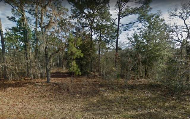 NE 154TH Avenue, Williston, FL 32696 (MLS #O5958891) :: Gate Arty & the Group - Keller Williams Realty Smart