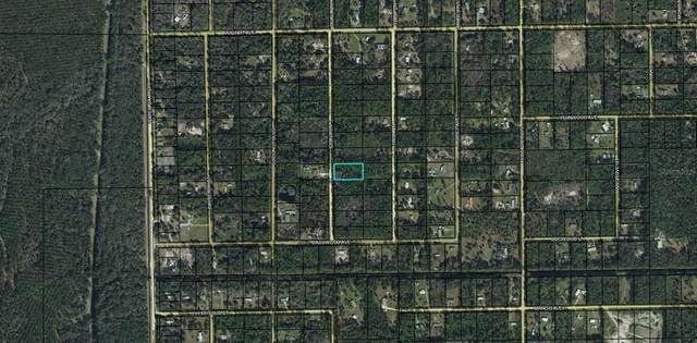 2277 Guava Lane, Bunnell, FL 32110 (MLS #O5959007) :: Sarasota Gulf Coast Realtors