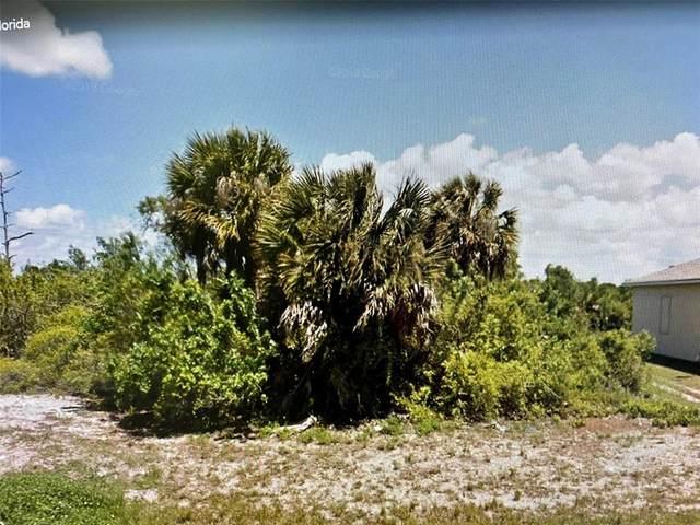 332 Albatross Road, Rotonda West, FL 33947 (MLS #O5959025) :: Team Turner