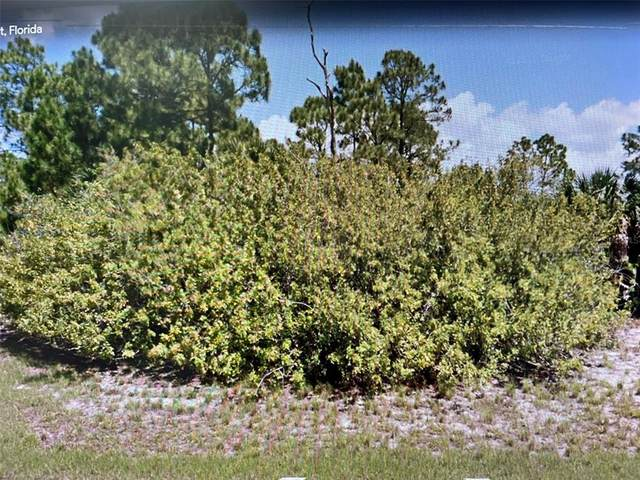 358 Albatross Road, Rotonda West, FL 33947 (MLS #O5959036) :: The Price Group