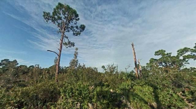 12301 Los Olas Drive, Punta Gorda, FL 33955 (MLS #O5959038) :: The Heidi Schrock Team