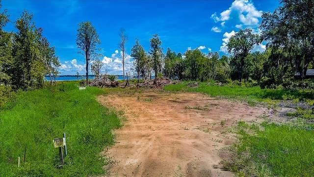 3701 Lakeview Acres Road, Saint Cloud, FL 34772 (MLS #O5959053) :: Zarghami Group