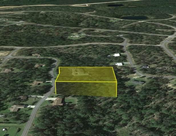 Vistula Drive, Chipley, FL 32428 (MLS #O5959246) :: Zarghami Group