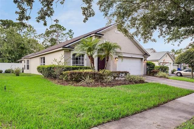 519 Dunoon Street, Ocoee, FL 34761 (MLS #O5959325) :: Century 21 Professional Group