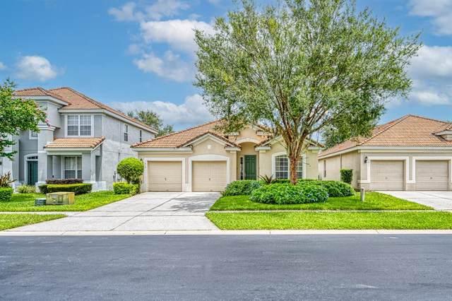 7813 Beechfield Street, Kissimmee, FL 34747 (MLS #O5959360) :: Bridge Realty Group
