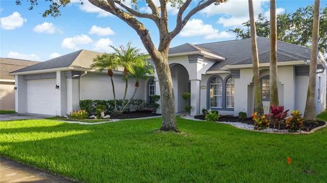 14376 Lord Barclay Drive, Orlando, FL 32837 (MLS #O5959367) :: Bridge Realty Group