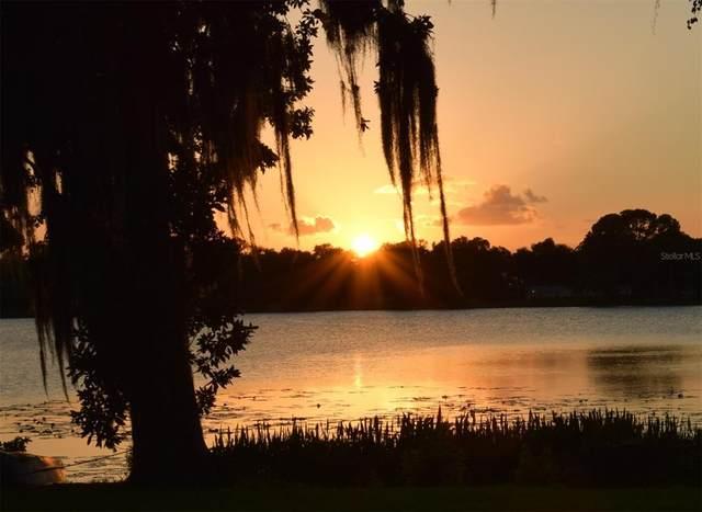 2002 Crescent Boulevard, Orlando, FL 32817 (MLS #O5959552) :: Zarghami Group