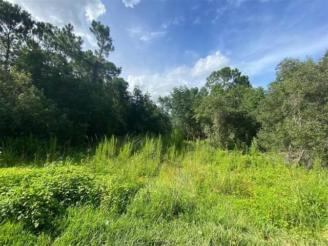 4145 Sorrento Road, New Smyrna Beach, FL 32168 (MLS #O5959562) :: Memory Hopkins Real Estate