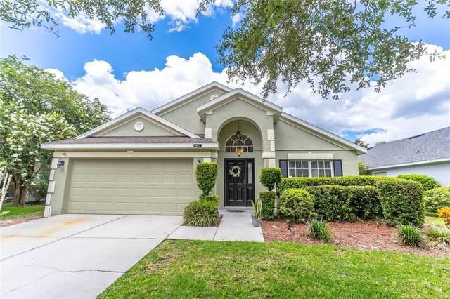 4927 Terra Vista Way, Orlando, FL 32837 (MLS #O5959598) :: Bridge Realty Group