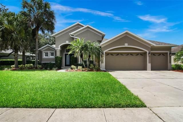 10372 Oakview Pointe Terrace, Gotha, FL 34734 (MLS #O5959620) :: Aybar Homes