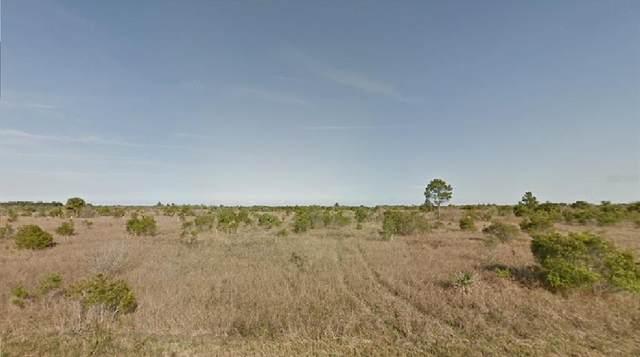 3143 Gosho Avenue SW, Palm Bay, FL 32908 (MLS #O5959696) :: Gate Arty & the Group - Keller Williams Realty Smart