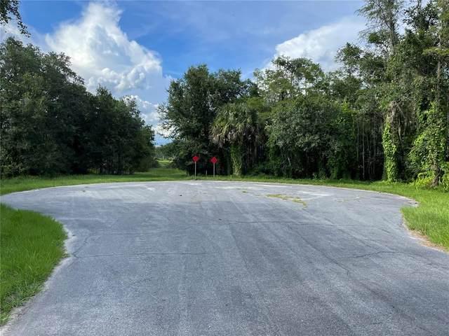 Kelvin Court, Orlando, FL 32833 (MLS #O5959779) :: Baird Realty Group