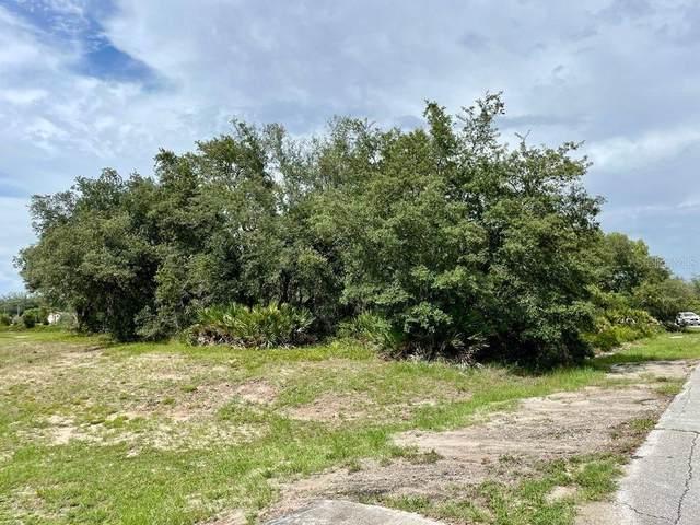 411 St Johns Lane, Poinciana, FL 34759 (MLS #O5959789) :: Zarghami Group