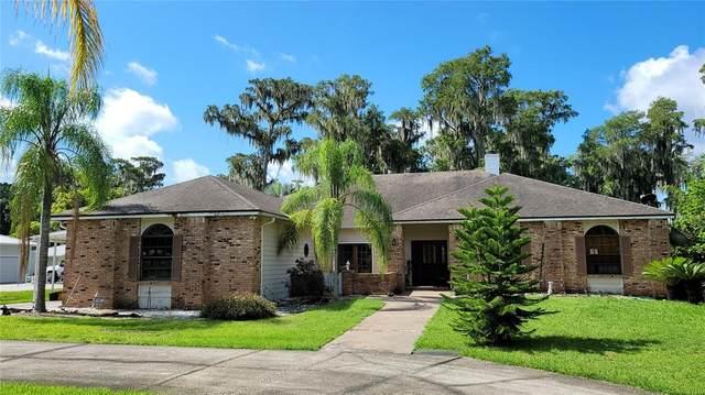 10637 Lake Louisa Road, Clermont, FL 34711 (MLS #O5959803) :: Pristine Properties
