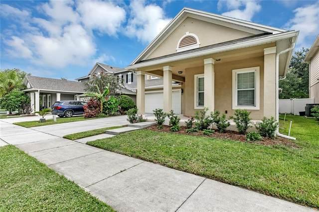 7272 Londale Boulevard, Windermere, FL 34786 (MLS #O5959808) :: Globalwide Realty