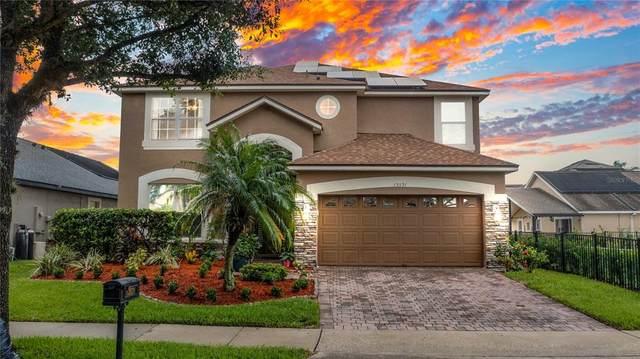 13531 Goostry Point, Orlando, FL 32832 (MLS #O5959867) :: Cartwright Realty