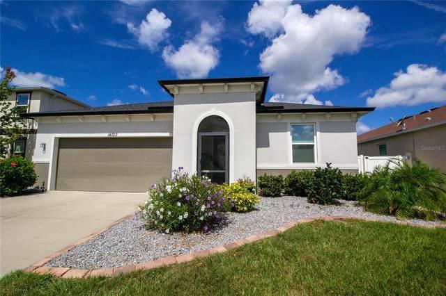 14313 Romeo Boulevard, Wimauma, FL 33598 (MLS #O5959888) :: Tuscawilla Realty, Inc